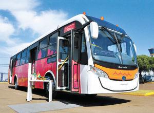 Bus Sariri El Alto